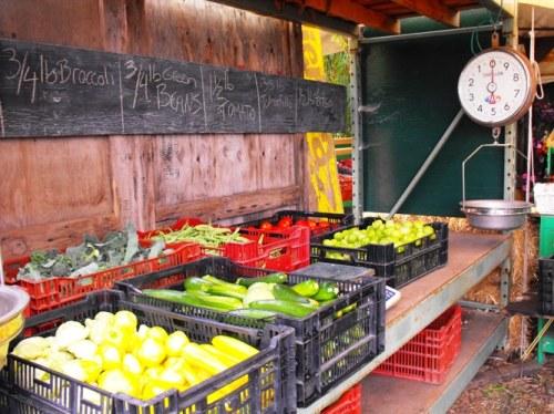 Tierra Vegetables farm stand
