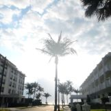 Australian Ave. Palm Beach