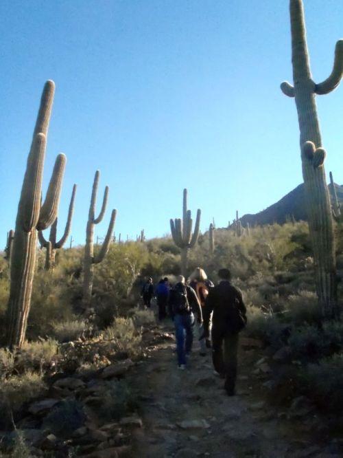 Arizona - McDowell Sonoran Preserve, Scottsdale