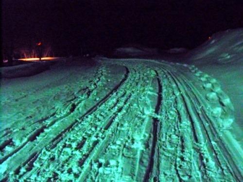 Ontario - Muskoka snow tracks