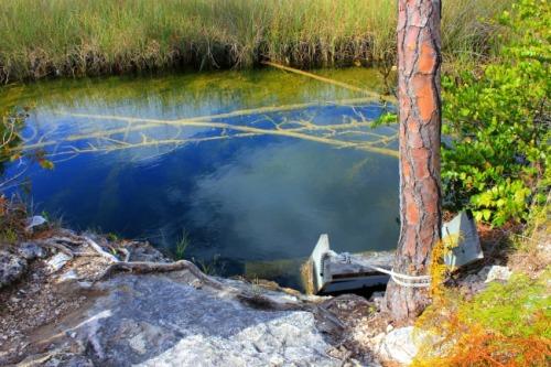 Bahamas - Abaco blue hole