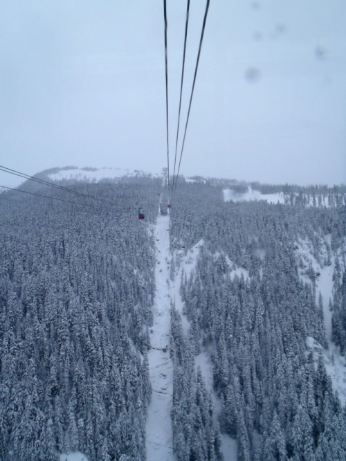 Whistler - Blackcomb peak to peak gondola