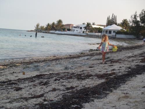 The Bahamas - beach