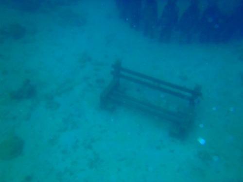 Grenada - Jason Taylor bench