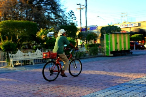 Mexico - La Paz cyclist