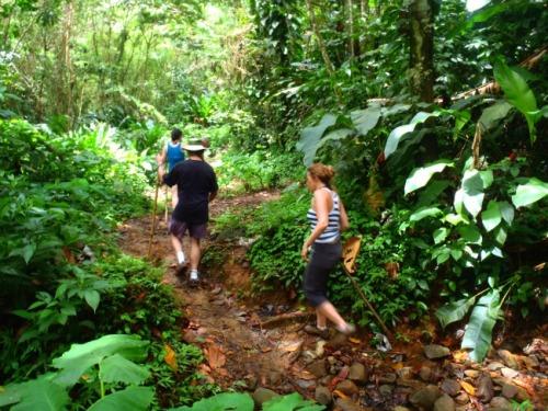 Grenada - hiking to Seven Sisters Waterfalls