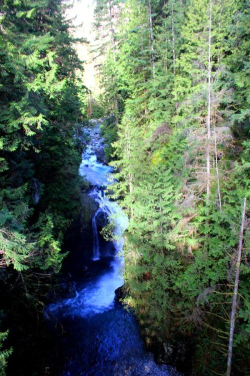 Vancouver - Lynn Canyon waterfalls