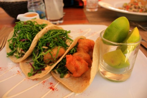 Mexico - La Paz shrimp tacos
