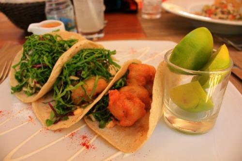 Mexico - La Paz shrimp tacos