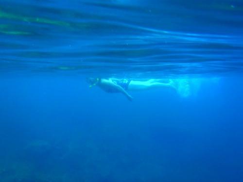 Tobago - snorkeler
