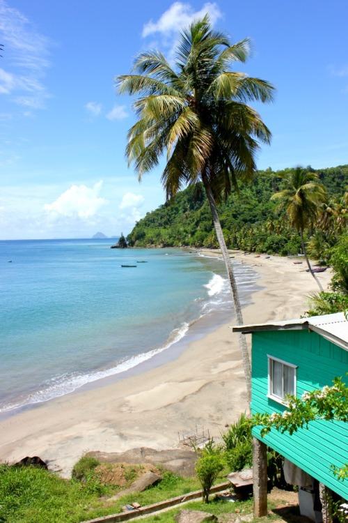 Grenada - empty beach