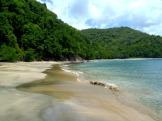 Tobago black sand beach
