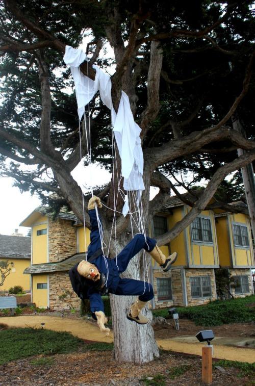California - scarecrow sky diver