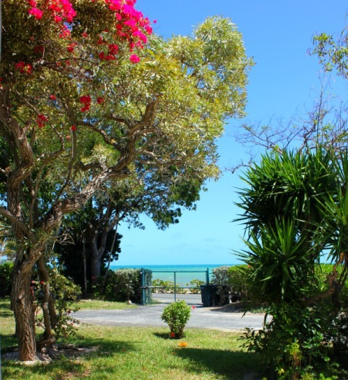 Bahamas - house gate