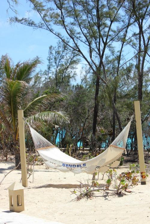 Bahamas - hammock