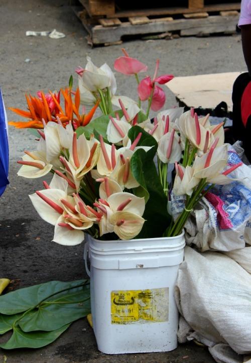 St Lucia - Castries market flowers