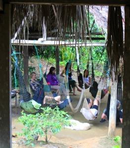 Ecuador - rainforest hammock area
