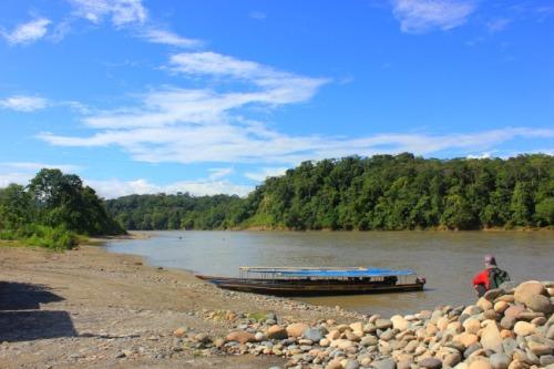 Ecuador - Napo River