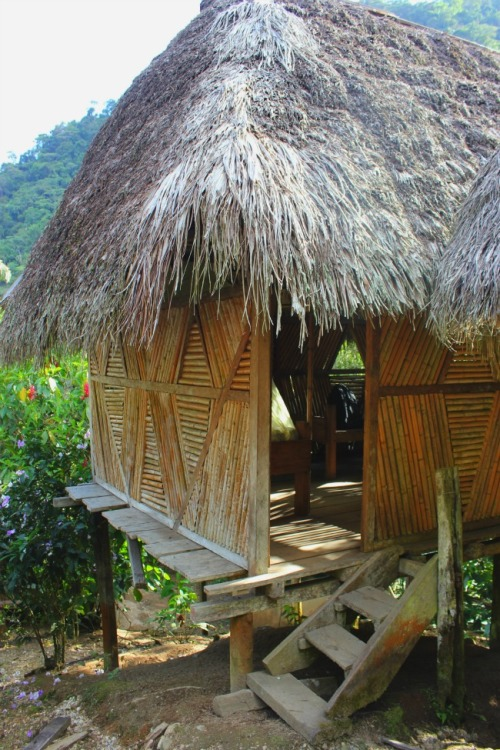 Ecuador - rainforest home