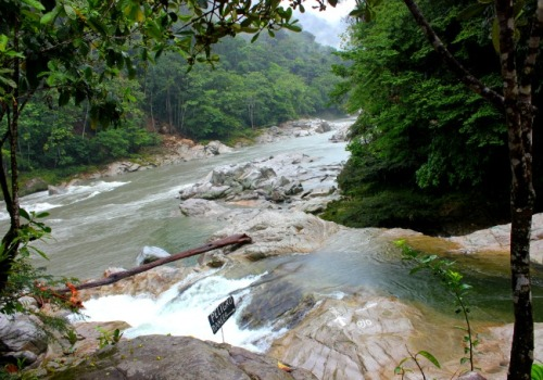 Ecuador - rainforest river