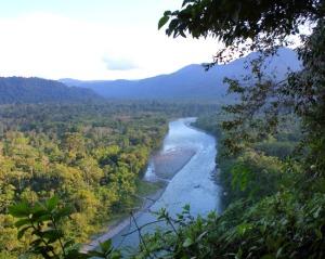 Ecuador - rainforest river