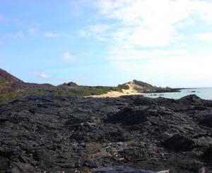 Galapagos Islands - lava island