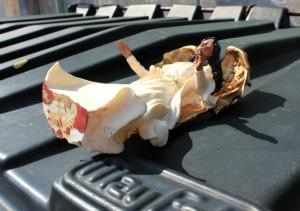 New Orleans - garbage angel