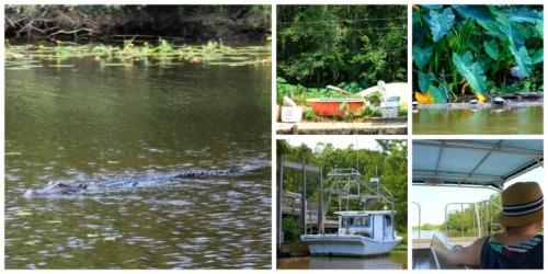 Louisiana - swamp collage A
