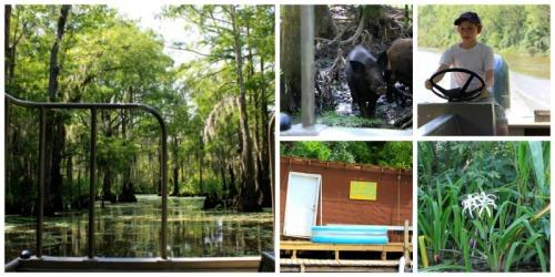 Louisiana - swamp collage B