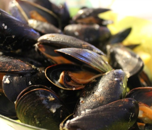 NS - Inverary mussels