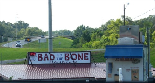 Mississippi - Bad to the bone