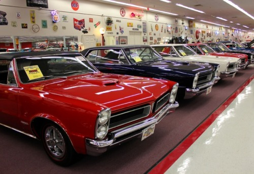 Florida - Muscle Car City GTO