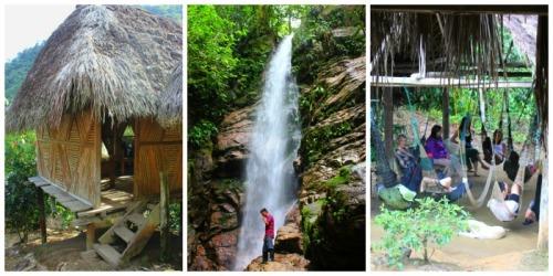 Ecuador - rainforest Local Living A