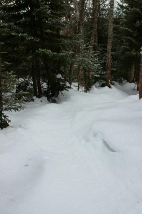 Quebec - Le Massif snowshoe trail