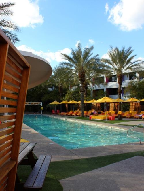 Scottsdale - Saguaro picante pool