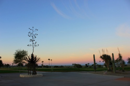 Arizona - Yuma sunrise