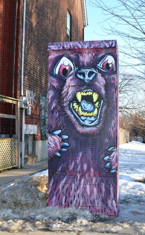 Toronto - electrical bear graffiti