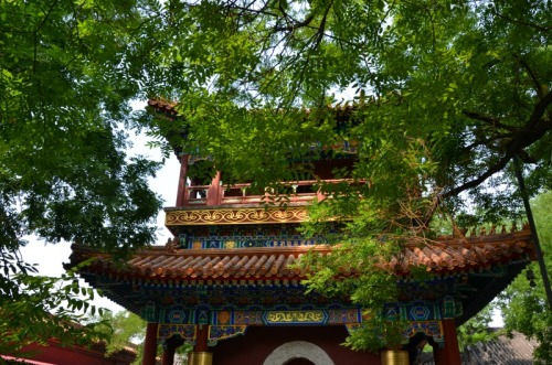 China - Yonghegong roof