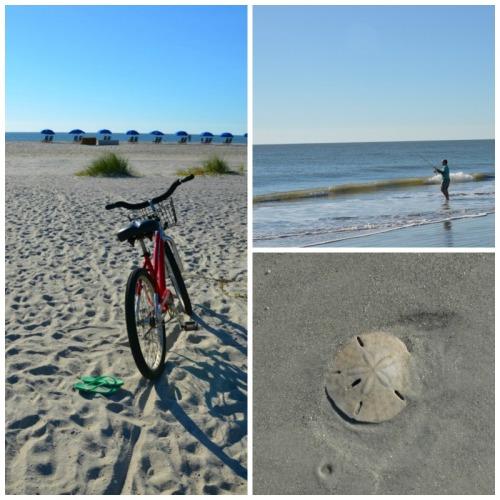 South Carolina - bike morning