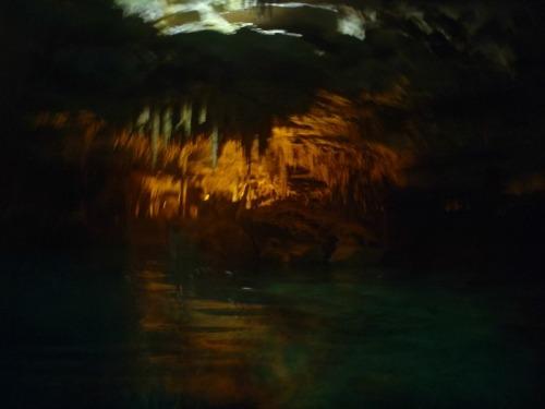 Mexico - cenote view