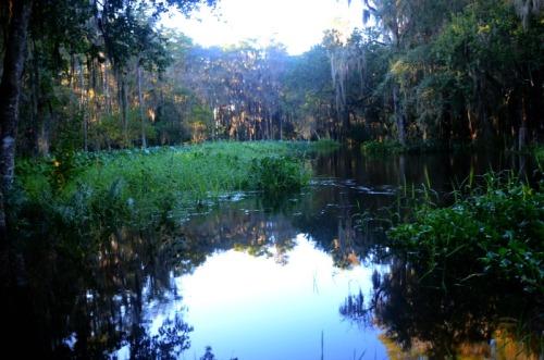 Orlando - Shingle Creek