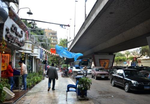 Egypt - Cairo street shark