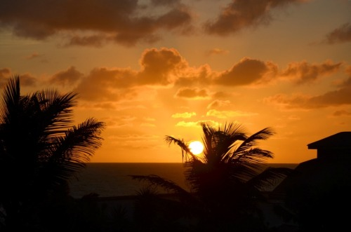 Barbados sunrise warm